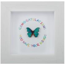 Congratulations – Wings – Little Wish